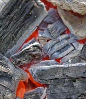 barbecue-1308910_1920